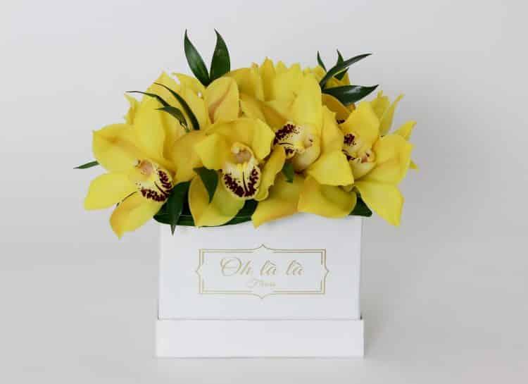 Orchidee - do 2 hod. - do-2-hodin, donáška kvetov Bratislava