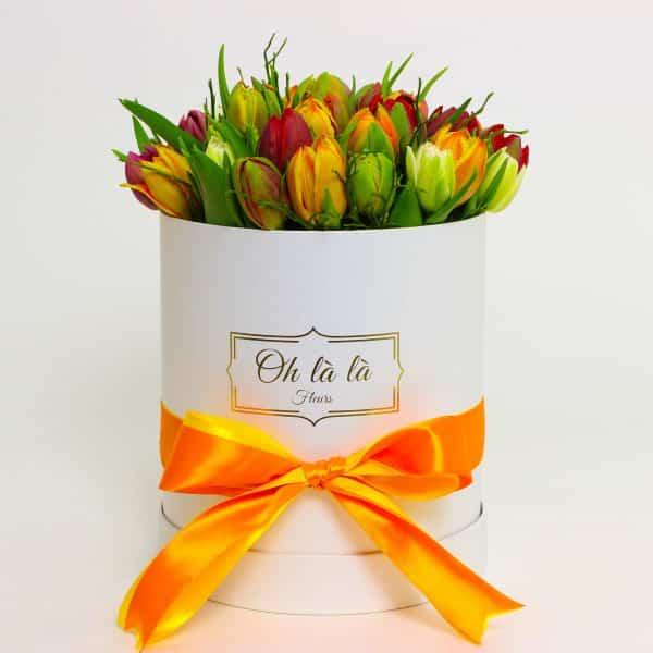 Tulipes - boxy, donáška kvetov Bratislava